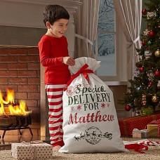 Santa's Special Delivery Bag