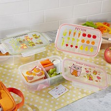 Bitty Bites Lunch Boxes