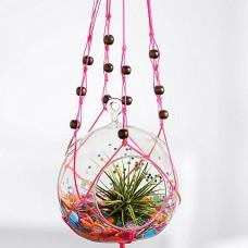 Birthday Confetti Hanging Terrarium